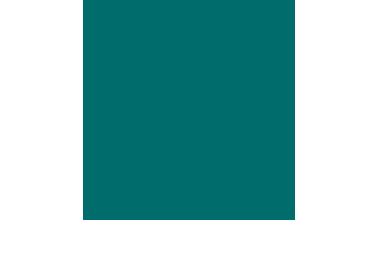 con_subsidio.png
