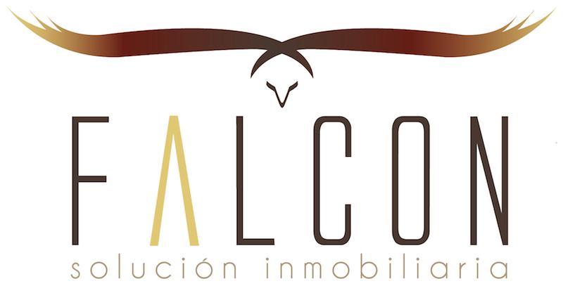 LOGO_FALCON_PARA_PAGINA_WEB__2_.png