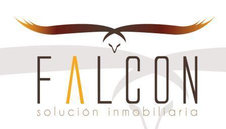 logo_falc.jpg