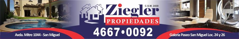 Ziegler Propiedades